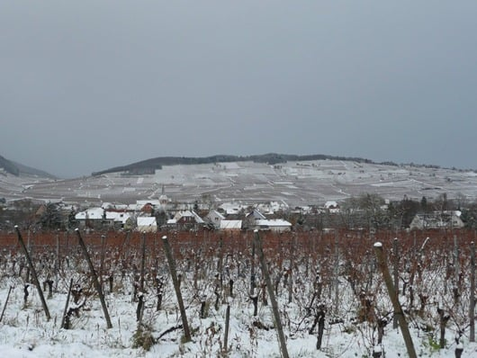 Alsace in Winter