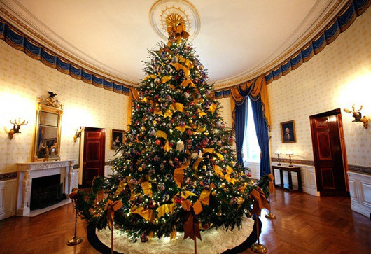 White House Chritmas Tree