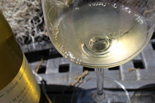 """Verget Bourgogne """"Terriors de Cote d'Or"""" Chardonnay in the Glass"""