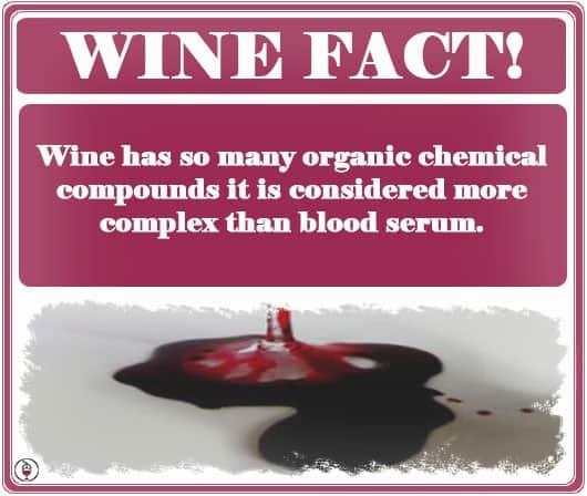 Wine vs. Blood.